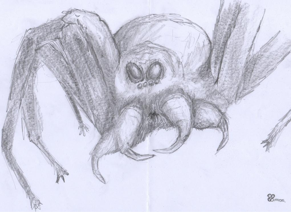 Araignée vorace